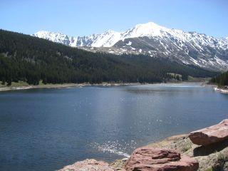 Colorado-foox1